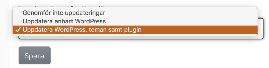 Automatiska uppdateringar av plugins till WordPress? Javisst, det fixar vi! 2